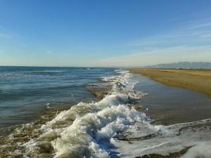 Spain-Els Muntells - Platja de l'Eucaliptus