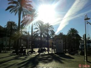 Sonne in Genua