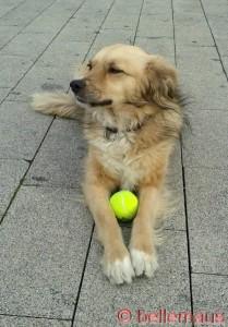 Nööö – ich spiele heut' nicht mehr – ich bin müde!