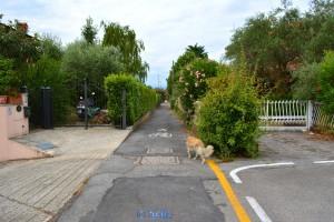 The Way to the Lago di Garda