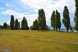 Park am Lago di Garda in Colombare