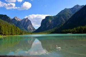 Lago di Dobbacio / Toblacher See