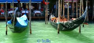 Im Bus (Boot) auf dem Canal Grande – Gondeln