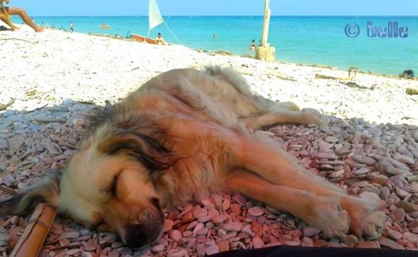 Relaxen am Strand :)