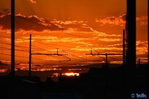 Marotta Sunset