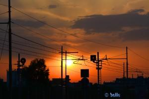Sunset Marotta