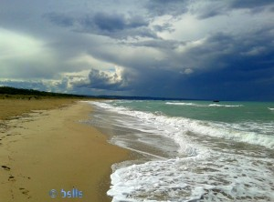 Strand 10km vor Termoli – ein Traum!!! ...das Wetter allerdings nicht!