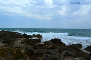 Rocks and Waves at Torre Mozza