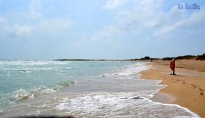 Beach of Torre Mozza