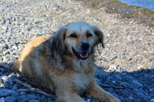 Nicol am Strand von Trebisacce – sie schaut auch ein bisschen ko aus die Kleine!
