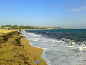 Beach of Santa Monica – Praialonga