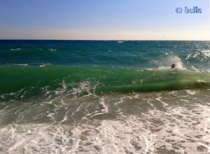 Big Waves at the Beach of Santa Monica