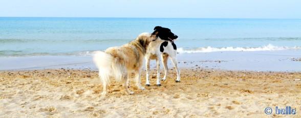 Nicol and Boy von Alcamo at the Beach of Alcamo - Golfo di Castellammare