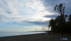 Beach and Forest of San Marco