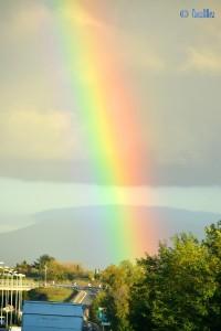Rainbow in Roma
