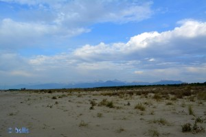 Panorama at the Dream-Beach at Marina di Torre del Lago di Puccini