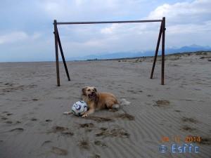 Hab ich das nicht prima gemacht? Nicol at the Dream-Beach at Marina di Torre del Lago di Puccini