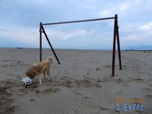 Was da wohl in diesem Ball ist??? Nicol at the Dream-Beach at Marina di Torre del Lago di Puccini
