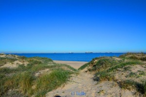 View from the Dunes to Platja Garrofera - Les Gavines