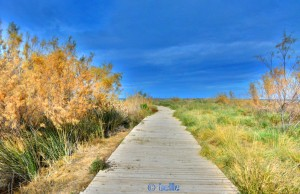 Way to the Beach in Dénia