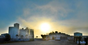 Fog in Puerto Motril – March 12 2015 – 8.26PM