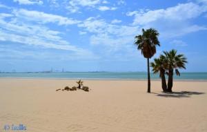 Playa Valdelagrana - El Puerto de Santa María – Im Hintergrund Cádiz und die noch unfertige Brücke