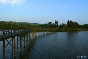 Las Doblas - Sanlúcar La Mayor - Corredor Verde del Río Guadiamar, Spanien – 2015