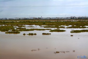 Irgendwo - A-472, 1000, 21610 San Juan del Puerto, Huelva, Spanien – alles unter Wasser!