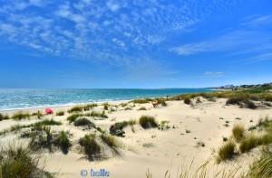 Dunas de El Portil – dahinter ein sensationeller Strand!