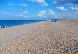 Parking directly at the Beach in Salthouse – August 2012