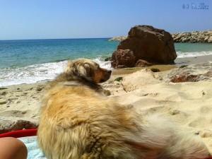 Ahhhh – relaxen am Strand ist super!