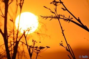 Sunset at Praia Naval – 21:53:11 – 300mm