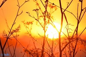 Sunset at Praia Naval – 21:59:39 – 300mm