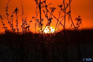 Sunset at Praia Naval – 22:01:31 – 300mm