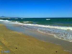 Wellen am Platja L'Almadrava – Spanien – für Nicol sicher zu kräftig.