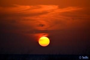 Der Himmel brennt! Sunset at Playa de los Lances Norte - N-340, 11380 Tarifa, Cádiz, Spanien – 15.11.2015 – 18:09:01 Uhr