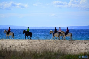 Reiter am Playa de los Lances Norte – Tarifa – Spain