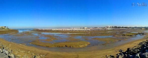 20151201_141920 Bouznaki Plages - Marocco