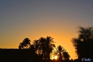 Sunset in Oasis Tighmert