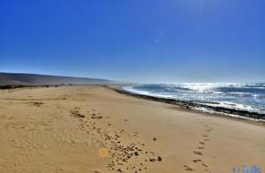 Unterwegs zur Düne (Blick zurück) – Plage A. Marokko