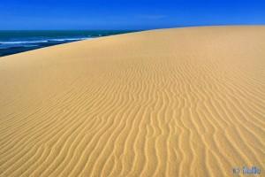 Wir erklimmen die Düne – Plage A. - Marokko