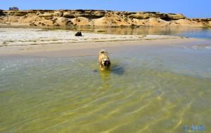 Neeeeeeeeeeeeeein – ich geh' nicht weiter ins Wasser!