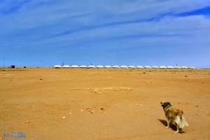 Zelte in Dakhla – Marokko
