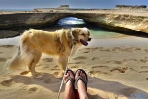 Nicol will mit auf's Bild ;) - Cap Barbas – Marokko