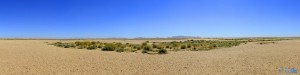 Endless Wide and Desert!