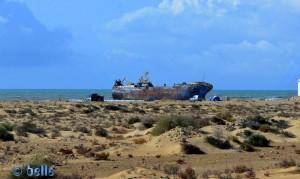 """Schiffswrack nahe dem Hafen von Laâyoune (El Marsa) mit dem Namen: """"Que sera sera"""" (was sein wird, wird sein..)"""