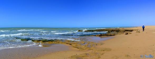 Baffo and Nicol at the Beach of Foum El Oued - Marokko