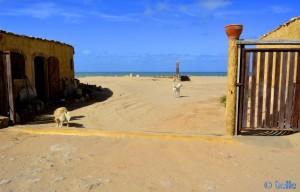 Nicol & Biondo - Camping Villa Bens - Tarfaya - Marokko