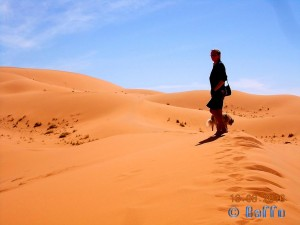 belle in the Desert - Merzouga - Erg Chebbi – Marokko