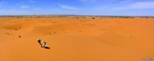 Nicol und Baffo in Merzouga - Erg Chebbi – Marokko